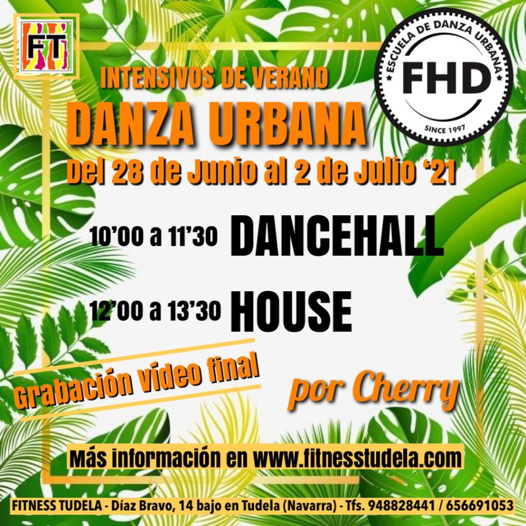DANCEHALL Y HOUSE, CURSOS DE VERNAO EN FITNESS TUDELA